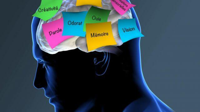 Traitement de la maladie d'Alzheimer