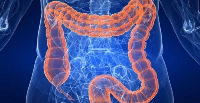 Purge et nettoyage des intestins